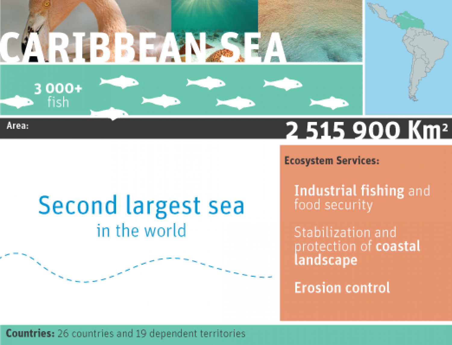 Caribbean sea Infographic