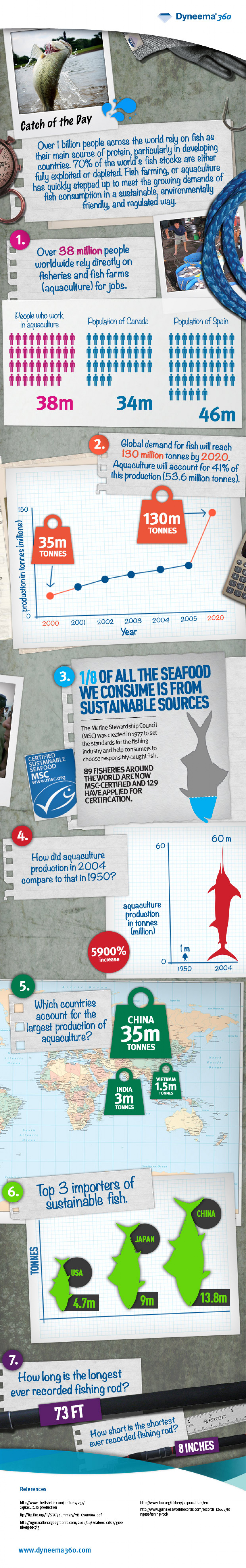 Catch of the Day: Sustainable Fishing Infographic