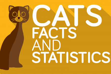 Cats: 18 Interesting and Funny Cat Facts Infographic