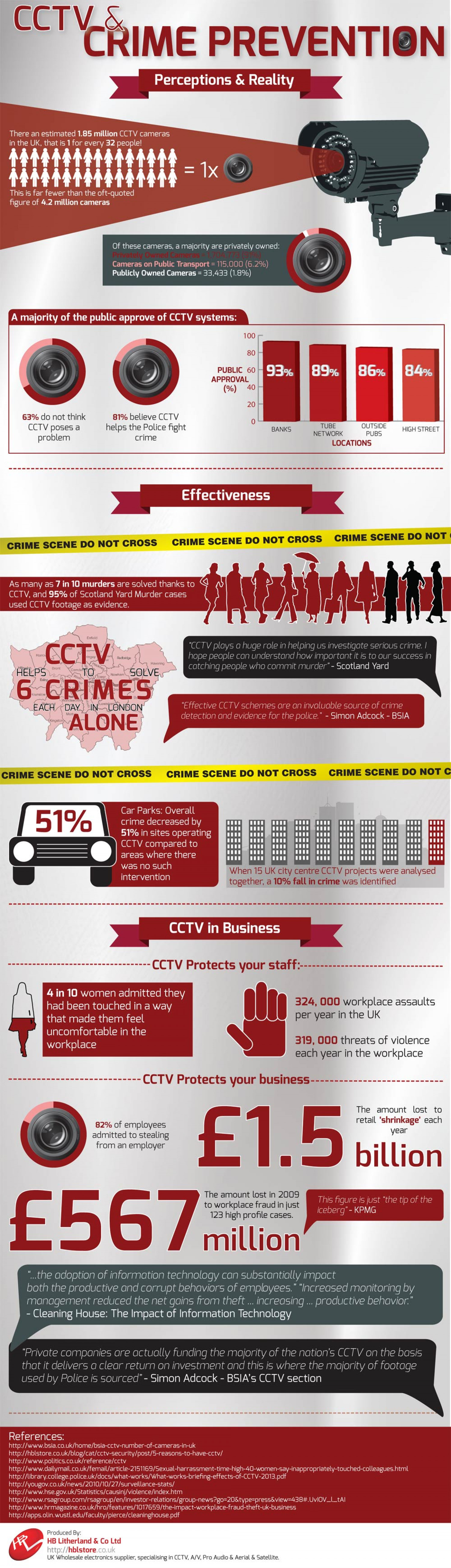 CCTV & Crime Prevention Infographic