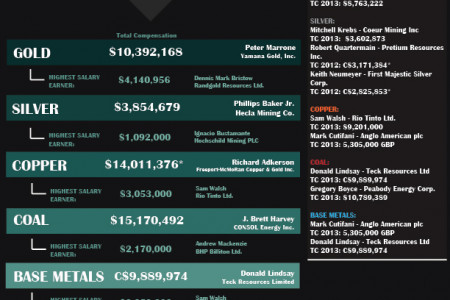 CEOs in Mining  Infographic