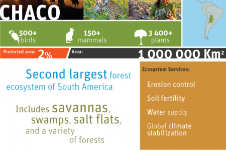 Chaco Infographic