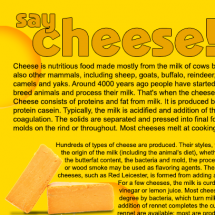 Cheese facts Infographic
