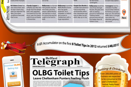 Cheltenham Festival Tips:#ToiletTips v The Pundits Infographic