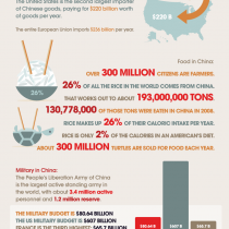 China in Numbers Infographic