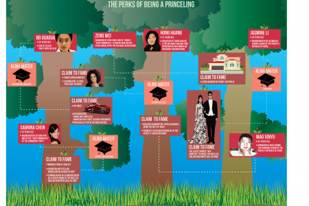 China's Communist Canopy Infographic