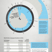 Chinese: The New Dominant Language of the Internet Infographic