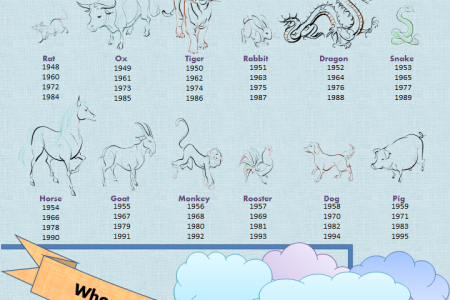 Chinese Zodiac Compatibility - Whose Your Match? Infographic