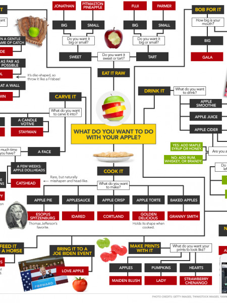 Choose The Right Apple Infographic
