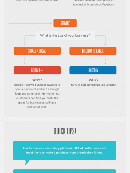 Choose The Right Social Media Platform  Infographic