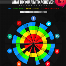 Choosing the most effective social media platforms Infographic