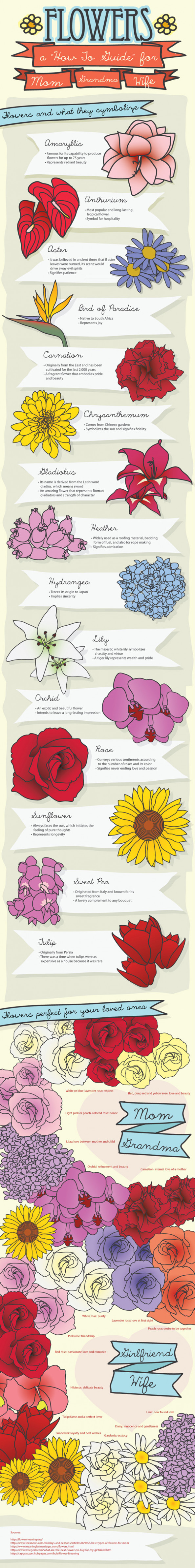 Choosing the Right Flower for the Right Occasion Infographic