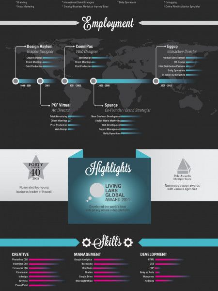 Chris Lucero - Media Director - Resume Infographic