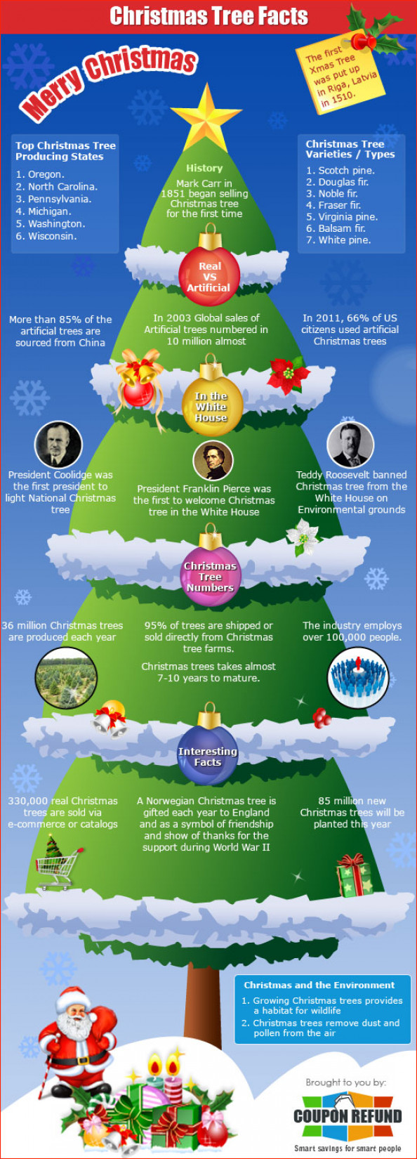 Christmas Tree Facts Infographic