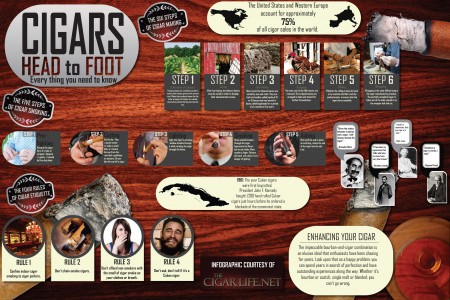 Cigars Head to Foot: Everything you need to know Infographic