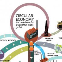 Circular Economy Infographic
