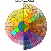 Coffee Flavour Wheel Infographic