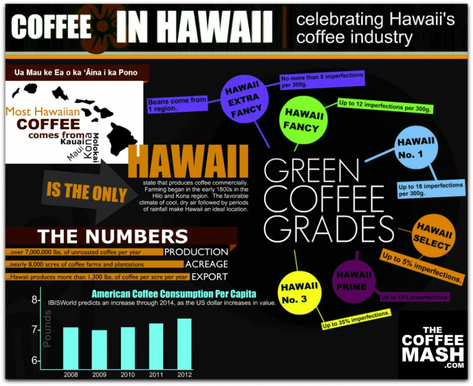 Coffee In Hawaii Infographic
