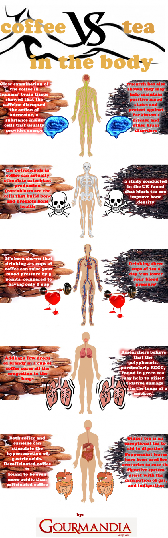 Coffee Vs. Tea in the Body