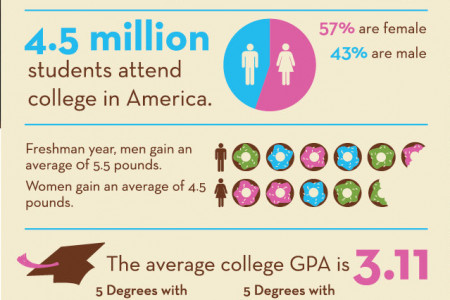 College Stats Infographic
