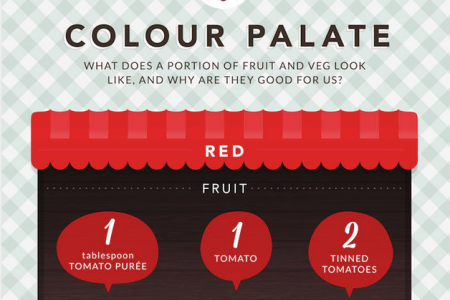 Colour Palate Infographic