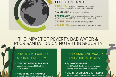 Combating Nutrition Insecurity In Developing Nations Infographic