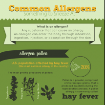 Common Allergens: Something to Sneeze At Infographic