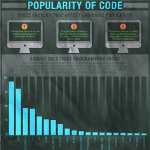 Computer Programming Language Infographic