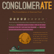 conglomerATE: The Consolidation of American Food Infographic