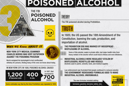 Conspiracy Theories that Turned Out to be True Infographic