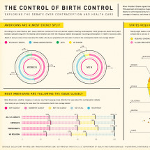 Control of Birth Control Infographic