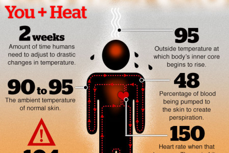 Conventional Wisdom: August heat in Tampa Bay Infographic