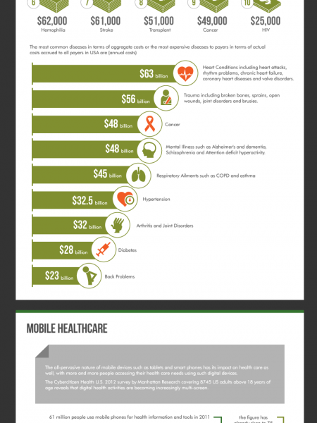 Cost Associated with Acute and Chronic Health Problems Infographic