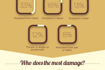 Cracked: The Economics of Smartphone Damage Infographic
