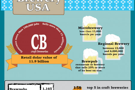 Craft Brewery USA Infographic