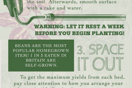 Creating Your Own Vegetable Garden Infographic