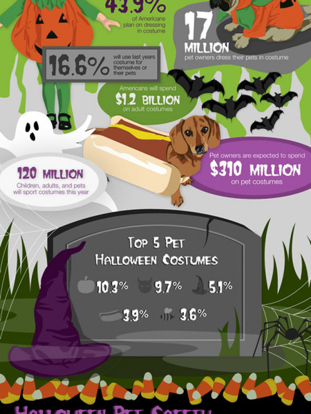 Creatures and Costumes Infographic