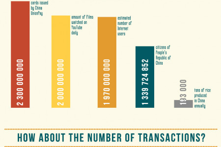 Credit cards in numbers Infographic