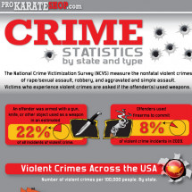 Crime in America: What do we know about it? (INFOGRAPHIC) Infographic