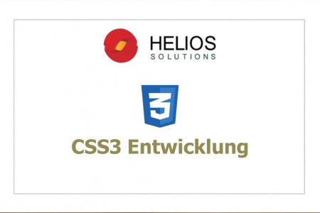 CSS3 Entwicklung Infographic