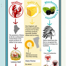 Cuisine of New York City Infographic