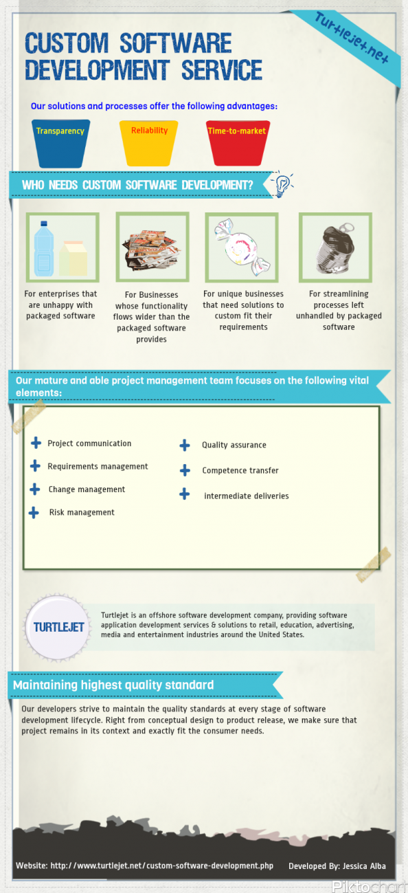 Custom Software Development Service Infographic