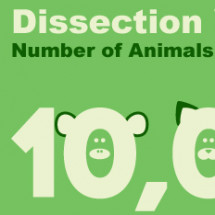 Cut Out Dissection Infographic