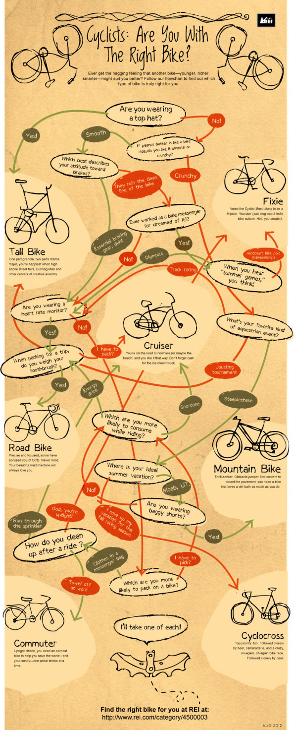Cyclists: Are You With the Right Bike? Infographic