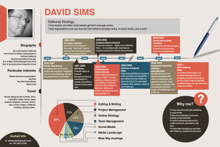 David Simm Creative Resume Infographic