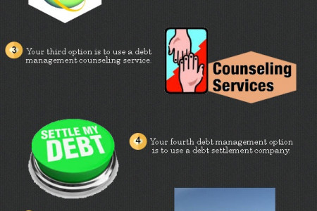 Debt Management Service Infographic