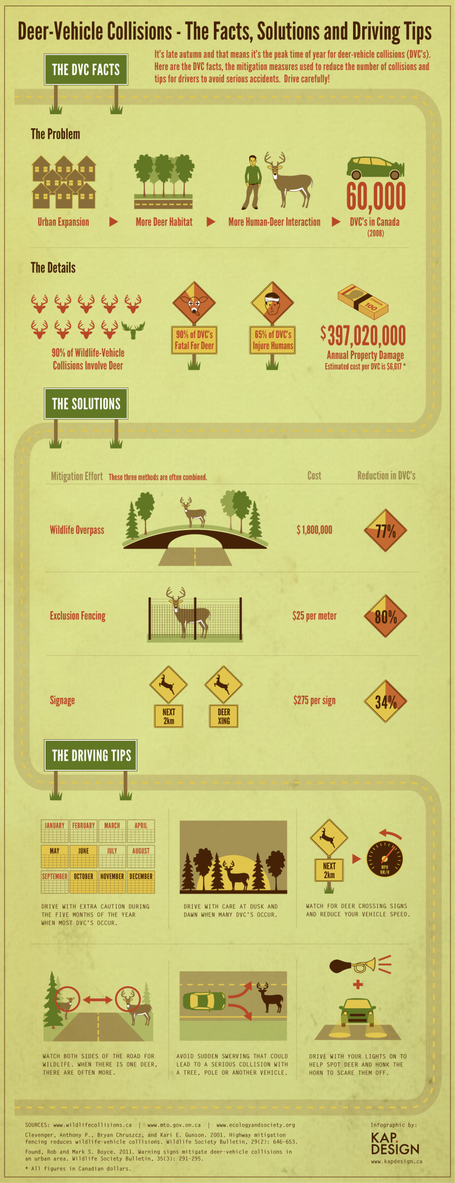 Deer-Vehicle Collisions - The Facts, Solutions and Driving Tips Infographic