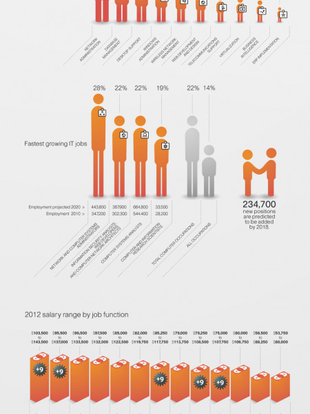 Demand for IT Networking Professionals Infographic