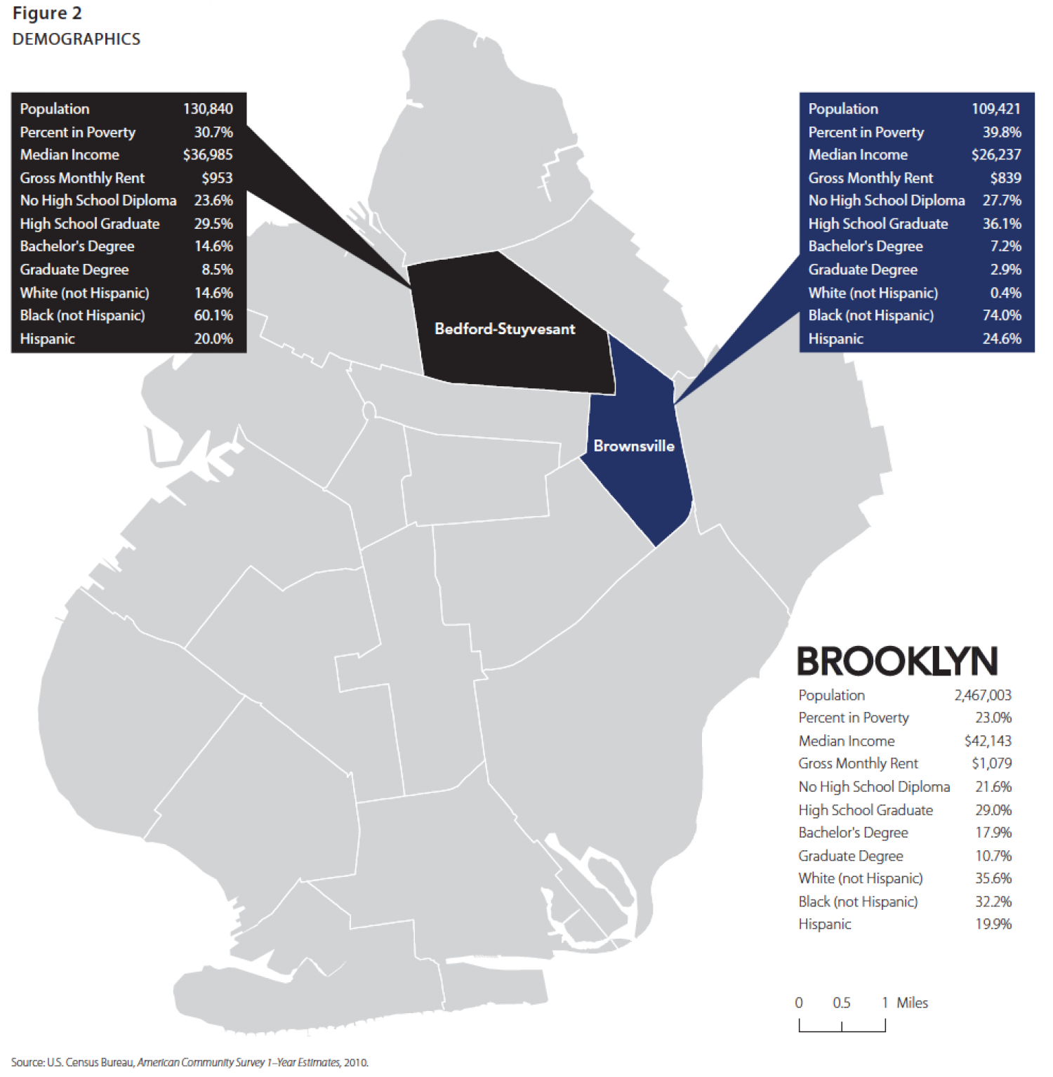 Demographics of Brooklyn Neighborhoods Infographic