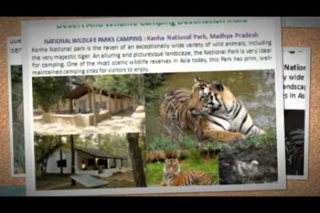 Desert And Wildlife Camping Destination India Infographic